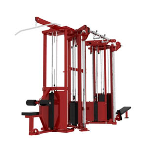 Dual Stack Functional Training Unit with Options